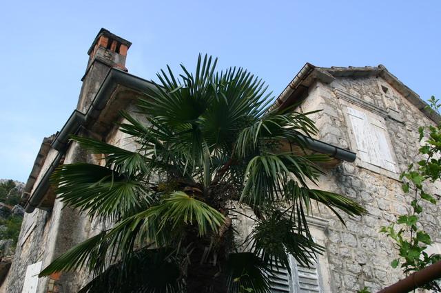 Старый дом в г. Ораховац